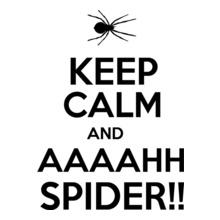 Keep Calm keep-calm-and-aaahh-spider T-Shirt