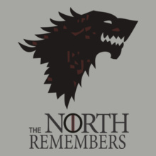 the-north-remembers T-Shirt