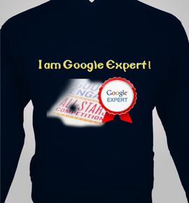 GoogleExperts - Hoody
