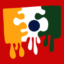 Custom Paint Your Own India Flag T Shirt T Shirts Design