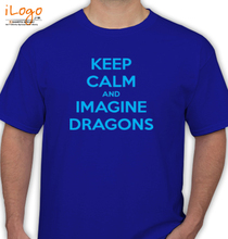 Imagine Dragons fbebedfc T-Shirt