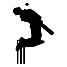 Cricket  action-%% T-Shirt