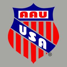 Brazil football World Cup AAU-USA T-Shirt