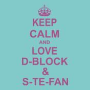 D-Block-and-S-Te-Fan-