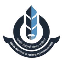 IIT Bhubaneshwar IIT-Bhubaneswar T-Shirt