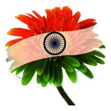 indian-flag T-Shirt