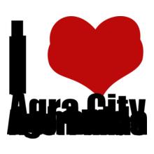Agra-city T-Shirt