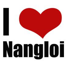 Delhi Nangloi T-Shirt