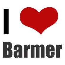 Rajasthan Barmer T-Shirt