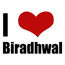 Rajasthan Biradhwal T-Shirt