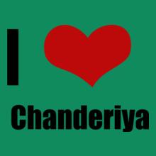 Rajasthan Chanderiya T-Shirt