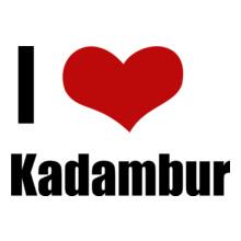 Tamil Nadu Kadambur T-Shirt