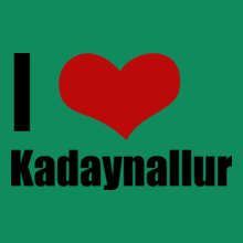 Tamil Nadu Kadaynallur T-Shirt