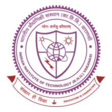 IIT (BHU) Varanasi iit-varanasi-polo T-Shirt