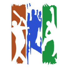 Cricket  indian-flag- T-Shirt