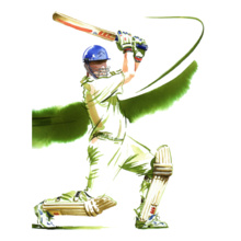 Cricket  CRICKET- T-Shirt
