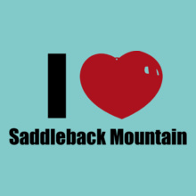 Wollongong Saddleback-Mountain T-Shirt