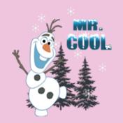 mr-cool