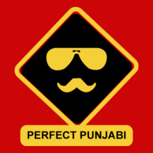 perfect-punjabi T-Shirt