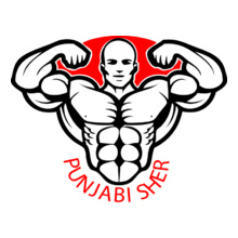 GYM  punjabi-sher T-Shirt