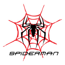 spider-web T-Shirt