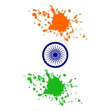 India-independence-day T-Shirt