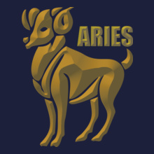 Aries T-Shirt