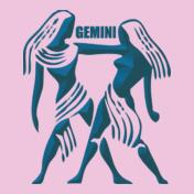 Gemini-