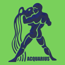 Aquarius aquarius- T-Shirt