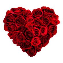 Valentine Day T Shirts Buy Valentine Day T Shirts Online For Men