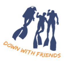 DownwithFriends T-Shirt
