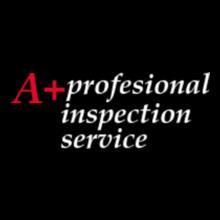 A+Professional-Inspection-Servicce T-Shirt