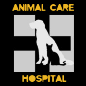 animal-care-hospital
