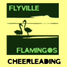 Cheerleading Flyville-Flamingoes-Cheerleading T-Shirt
